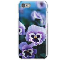 Lavender Pansies iPhone Case/Skin