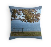 Solitude at the Lake Throw Pillow
