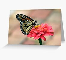 Monarch Butterfly on Zinnia Greeting Card