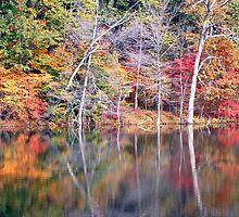 Lakeside by gypsyin37