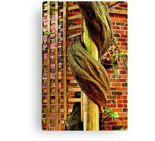 """The Vine"" Canvas Print"