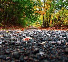Fall Road by gypsyin37