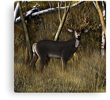 Buck in the Brush Canvas Print