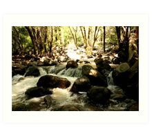 Beauty in Nature Art Print