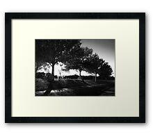 Night Trees Framed Print