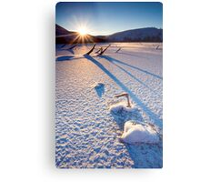The Long Shadows of Winter Metal Print