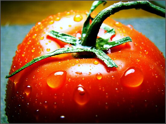 Juicy Tomato by Dani LaBerge
