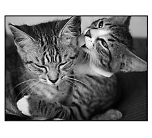 Squeak And Ghost Photographic Print
