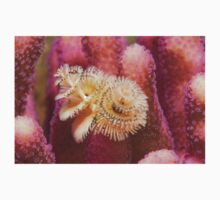 Christmas Tree Worm Kids Clothes