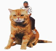 Tyler, the Creator riding cat by JaycupBowl