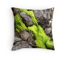 Adorned Rock Throw Pillow