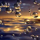 Bubbles in the Sun by Kimberly Palmer