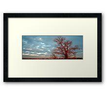 Red Tree II Framed Print