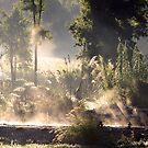 Steamy Morning Koi Pond II by velveteagle