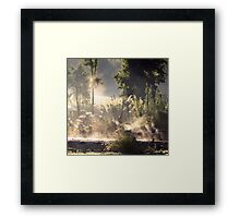 Steamy Morning Koi Pond II Framed Print