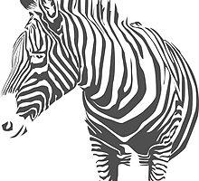 Zebra by Danielle Kerese