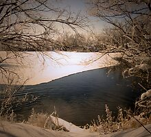 Winterscape by narrowpathphoto
