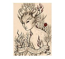 Fae (Print with white border) Photographic Print