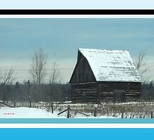 New Barn (2 of 2) by TerriRiver