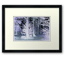 Pink Holly Framed Print