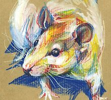 Praline the rat III by NuanceCurieuse