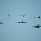Fighter Formation, RAAF Williamtown 2010 by muz2142