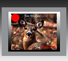 Take Me Home for RedBubble (pro bono card) by TerriRiver