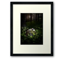 Son of the forest Framed Print