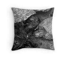 BW Toitles Throw Pillow