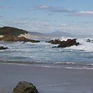 rugged, windy, beautiful coastline at Trial Harbour, west coast of Tasmania by gaylene