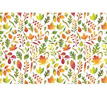 Watercolor autumn leaves pattern Photographic Print