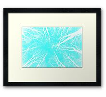 Root or Branch v 08 : Photography by Alys Griffiths Framed Print