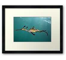 Another Day Another Dragon Framed Print
