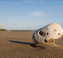 Windy beach by Paul Tremble