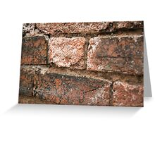 Brick Wall : Photography by Alys Griffiths Greeting Card