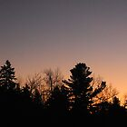 Winter Dawn in Mont-Laurier (Quebec, Canada) by TerriRiver