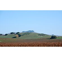 Napa Photographic Print