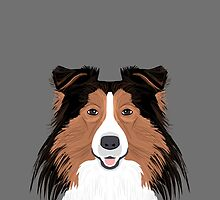 Jordan - Shetland Sheep Dog gifts for sheltie owners and dog people gift ideas perfect dog gifts by PetFriendly