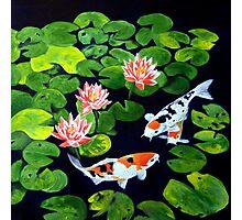 Lotus Blossoms Photographic Print