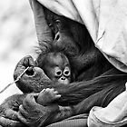 Loving Mother by Greg Riegler