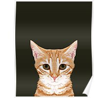 Chase - Cute Orange Tabby cat gifts for cat lady cat lovers pet owner gifts cell phone with cute cat Poster