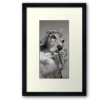 CANDY b&w Framed Print