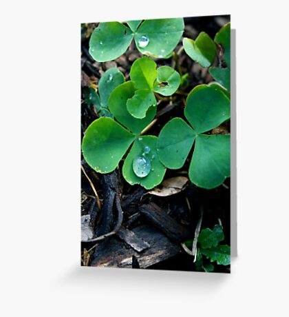 One Leaf Short Of Luck Greeting Card
