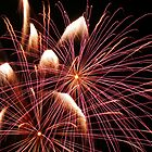 Fireworks 4 by laurynwood