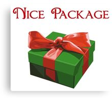 Nice Package Christmas Present Canvas Print