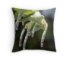 KC Ice Storm '07 Throw Pillow