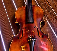 Violin on a Gate by JRHetrick