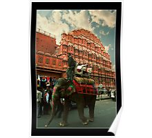 Elephant at Hawa Mahal Poster