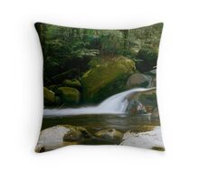 Taggerty River. Throw Pillow