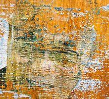 dalai lama by Michael Findlay